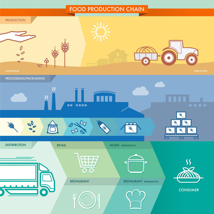 28498272 - food production chain